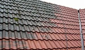 Moos Entfernen Dach : moos vom dach entfernen preise methoden vorteile rat ~ Orissabook.com Haus und Dekorationen