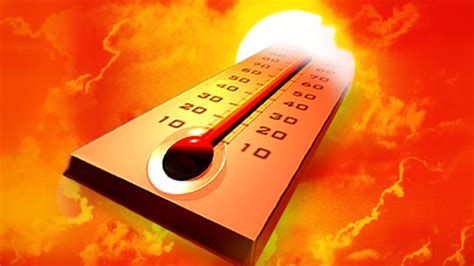 Tips For Gardening In Extreme Heat  The Old Farmer's Almanac. Physical Therapy Dublin Www Lloydflanders Com. Library Science Online Programs. University Of Minnesota Orthodontics. Kansas City Art Institue Refinance House Loan. 3501 Johnson Street Hollywood Fl. What Do Dental Assistants Do Ford V8 Truck. Medicare Supplement Plan F Rates. Georgia Board Of Massage Therapy