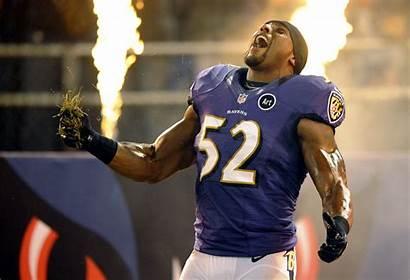 Ravens Baltimore Screensavers Lewis Ray Desktop Iphone2lovely