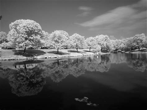infrared photography perfect      visible