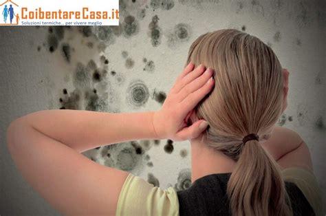 coibentazione pareti interne muffa come isolare una parete interna dalla muffa coibentare casa
