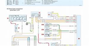 Peugeot 206 Hdi Diesel Engine Management System Wiring Diagrams