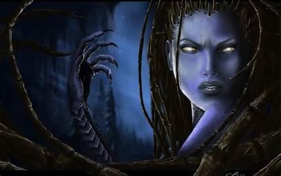 Kerrigan Starcraft Witch Dark Sarah Blades Female