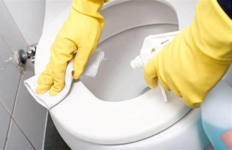 nettoyage et entretien dans les wc et dans la salle de bain et les probl 232 mes de plomberie