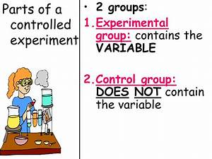 Topic: Scientific Method - ppt download