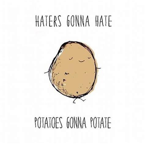 Haters Gonna Hate Meme - epic haters gonna hate memes 39 pics 1 video izismile com