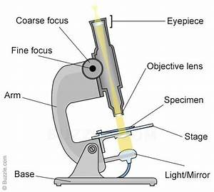 What Do You Mean By Objective And Eyepiece Lens In A
