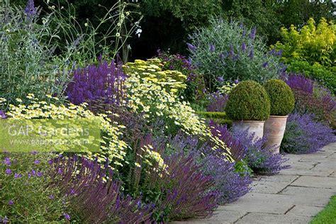 gap gardens summer border  buddleia davidii lohinch