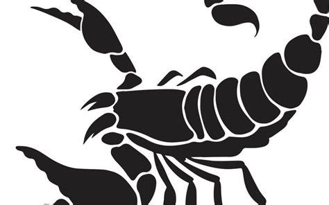 scorpion web design should attorneys use scorpion web design lawyer seo