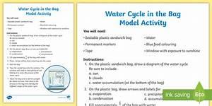 Fun Water Cycle In The Bag