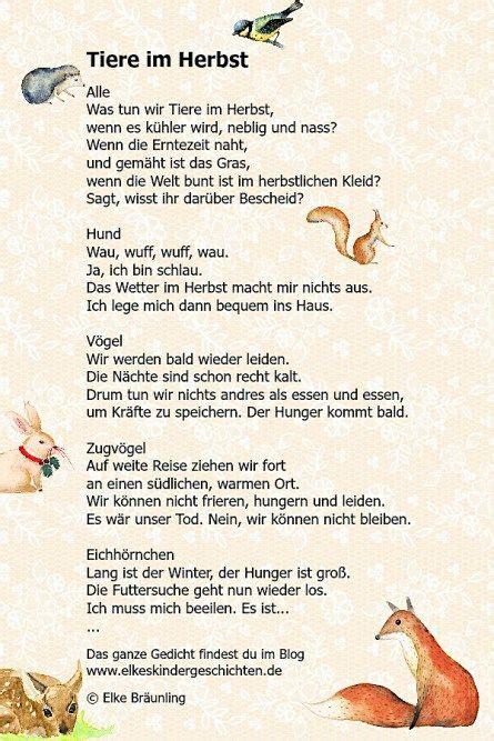Herbst Im Garten Gedicht by Tiere Im Herbst Herbst Autumn Autumn