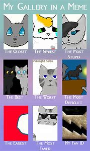 Cat Memes 2019 Clean World Of Cats