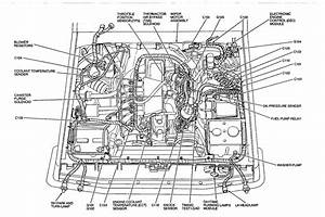 32 Ford F150 Fuel System Diagram