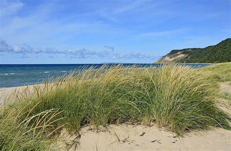 Dune Grass And Dunes Photograph By Dave Zuker