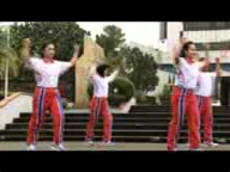 download video senam skj 2013 mp4