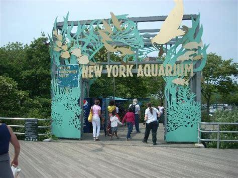 coney island aquarium hours sea show at new york aquarium picture of new york aquarium tripadvisor