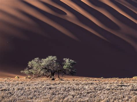 National Geographic Sea of the Desert