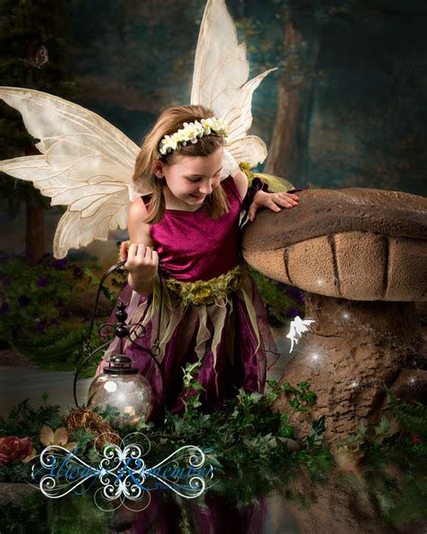 The Enchanted Forest Comes Alive With Fairies Everywhere
