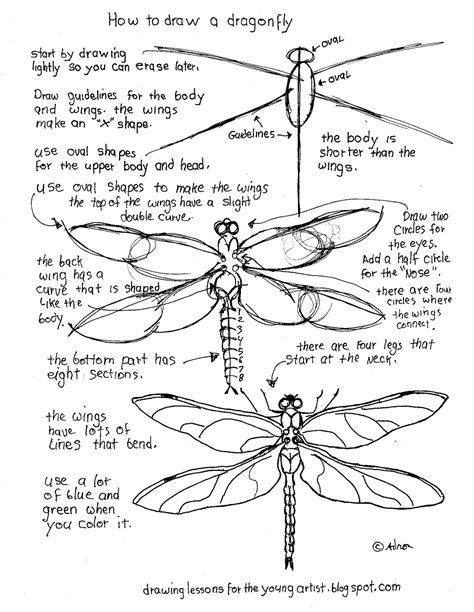 how to draw worksheets for the artist printable how