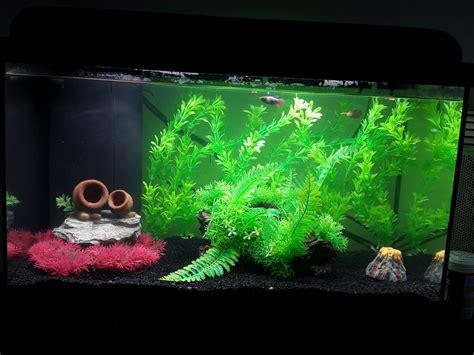 aquadream 60 noir 54 litres avec 233 clairage led aquarium et meuble