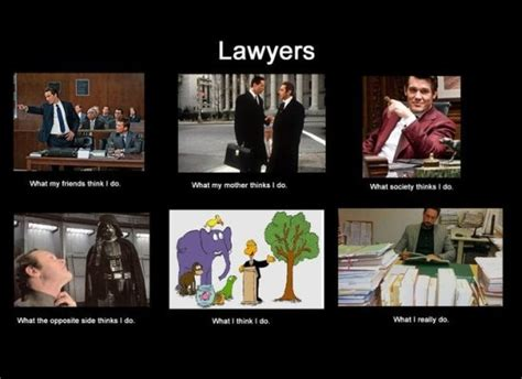 Meme Lawyer - what people think i do what i really do the latest internet craze pics