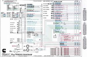 34 Cummins M11 Ecm Wiring Diagram