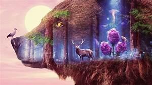 Mystical, Wildlife, Wallpapers