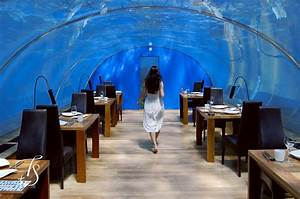 Dine at the phenomenal Ithaa, the Underwater Restaurant ...
