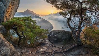 Korea Nature South Tree Roots Clouds Sunset