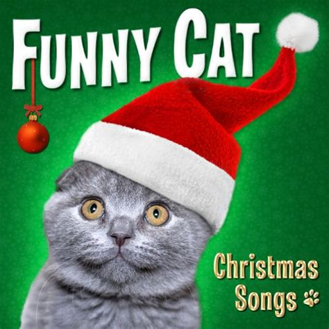 funny cat christmas songs  funny cats  amazon