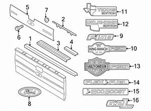 Ford F-150 Tailgate Molding