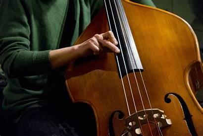 Jazz Instruments Musica Musical Frasi Inglese Instrument