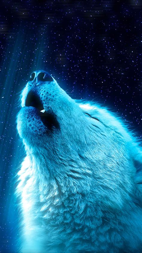 wolf heaven  wallpapers hd wallpapers id