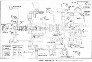 1985 Fxr Wiring Diagram 14416 Archivolepe Es