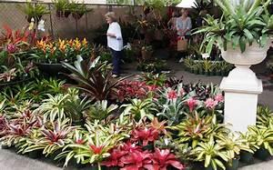 Photo : Home Designs Brisbane Images Queenslander