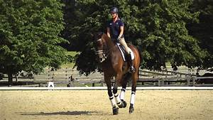 Behind the Scenes of Dressage