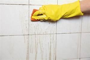 Fugen Im Bad Reinigen : badezimmer fliesen reinigen auf die fliesenart achten ~ Michelbontemps.com Haus und Dekorationen