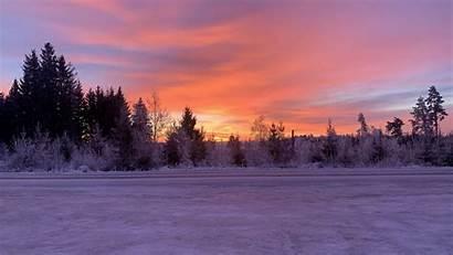 Winter Snow Horizon Dawn Trees Sunrise Sky