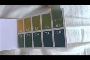 Sodawasser Selber Machen : video ph wert messung so testen sie ihr leitungswasser ~ Orissabook.com Haus und Dekorationen