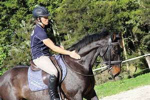 Start Your Horse The Right Way  8 Top Tips From Vicki Wilson