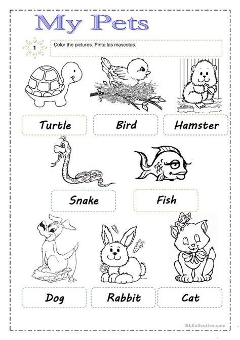 pets worksheet  esl printable worksheets