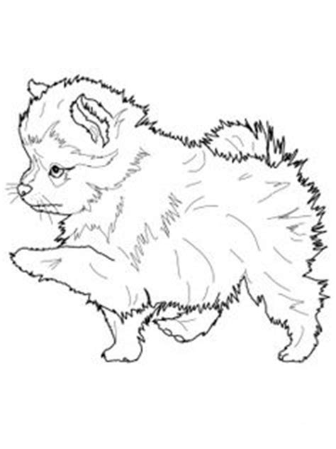 favorite dog colouring pages images dog