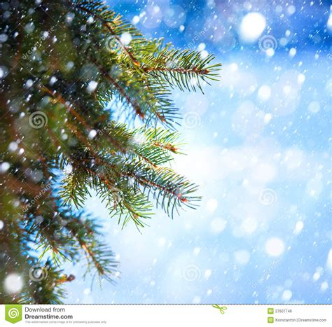 art christmas tree branch and snow fall stock photo