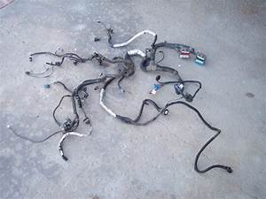Buy 1994 Z28 Camaro Firebird Trans Am Lt1 Engine Wiring
