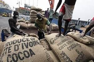 Condition Pour Etre Garant : afrikanwebbusiness les nouvelles conditions pour etre acheteur et exportateur de cacao ~ Medecine-chirurgie-esthetiques.com Avis de Voitures