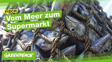 Fisch  Vom Meer Zum Supermarktregal Youtube