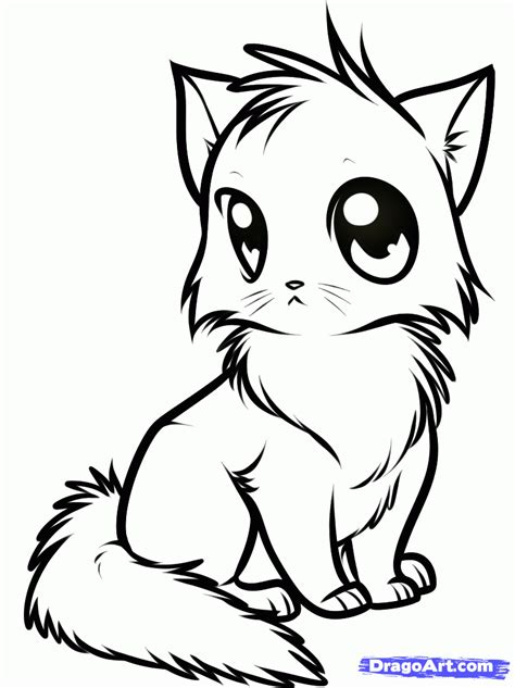 draw  cute anime cat step  step drawing sheets added