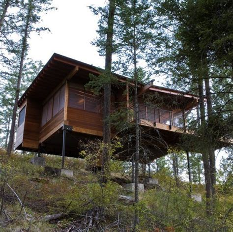 harmonious house on stilts designs cottage on stilts by andersson wise architects modern