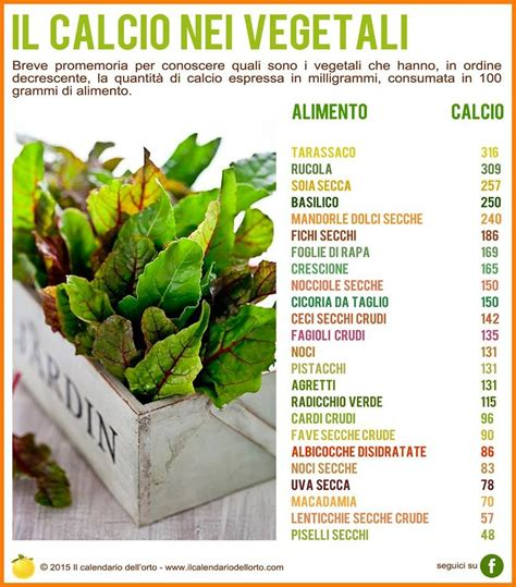 Calcio Alimenti Vegetali Il Calcio Nei Vegetali Alimentazione Food Healthy E