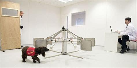 Metode Aborsi Jawa Tengah Dibanding Alat Medis Anjing Lebih Jago Deteksi Kanker